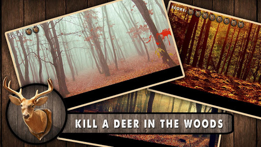Kill Deer Autumn