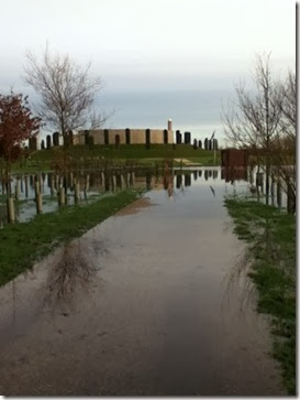 Flood at Arboretum