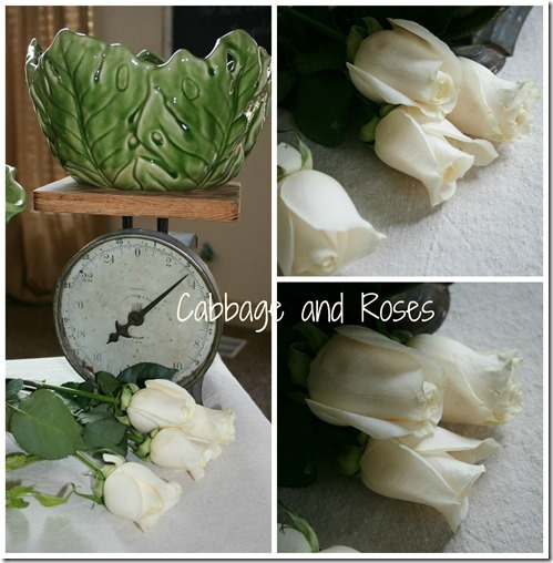 cabbage & roses_thumb[2]