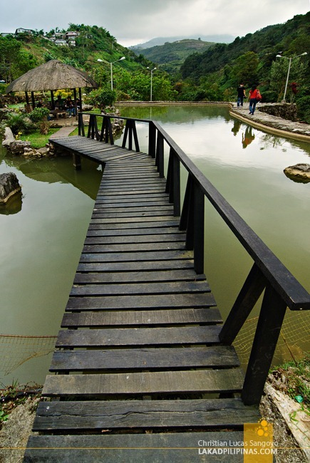 The Pond at Benguet's BenCab Museum