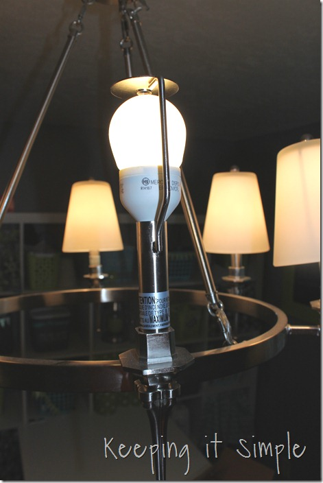 light fixture (1)