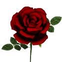 Rose 3D Flower icon