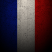 EURO France Live Wallpaper
