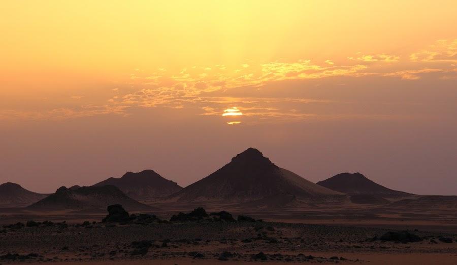 Saharan Sunrise by Gabriel Gutierrez - Landscapes Sunsets & Sunrises ( desert, sunrise, travel, africa, egypt,  )