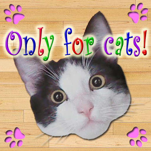 只有貓 休閒 App LOGO-APP試玩