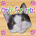 Only for Cats icon