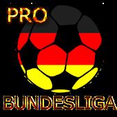 Widget Bundesliga PRO 2014/15