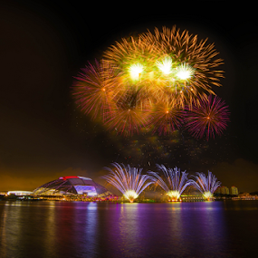The Opening of Singapore National Stadium by Sam Song - Abstract Fire & Fireworks ( fireworks,  )