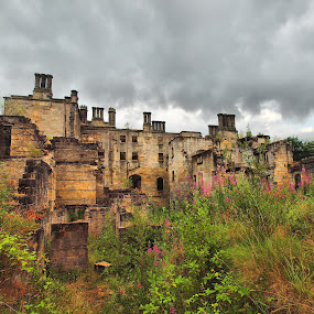 Abandoned Scotland (Dunmore House) by Martin Hughes - Buildings & Architecture Decaying & Abandoned