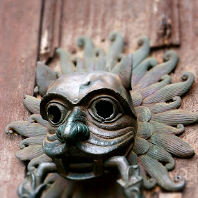Dare to knock by Shona McQuilken - Buildings & Architecture Architectural Detail ( lion, church, knocker, door, brass, antique,  )