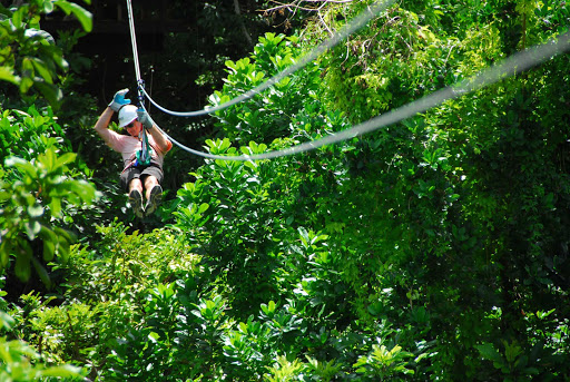 zipline-Barbados - A visitor goes ziplining across a canopy of trees on Barbados.