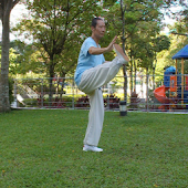 Yang TaiChi40-5