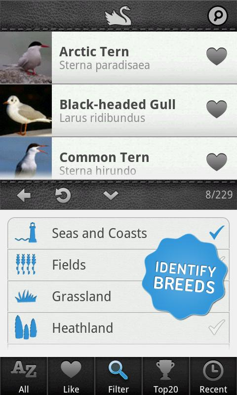 Birds PRO - screenshot