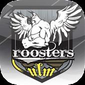 Roosters Ulm