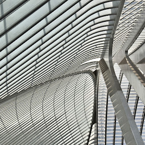 Guillemins 6 by Anita Berghoef - Buildings & Architecture Public & Historical ( modern, train station, white, guillemins, liege, architecture )