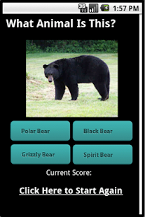 Cool Animal Type Quiz - FREE - screenshot thumbnail