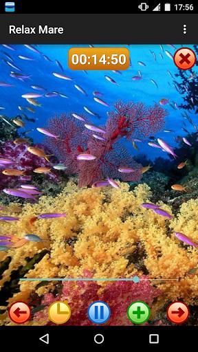 放鬆海 - 大自然的聲音
