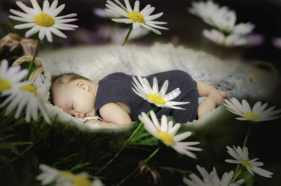 by Emo'llezion Art - Babies & Children Babies ( basket, baby, sleep, garden, flower,  )