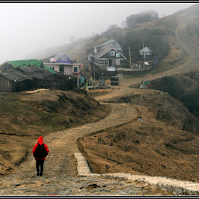 Traveller  by Soumya Chattopadhyay - Landscapes Travel