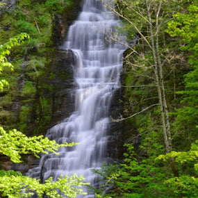 Pratts Falls, Manlius, NY USA by Steve Friedman - Landscapes Waterscapes (  )