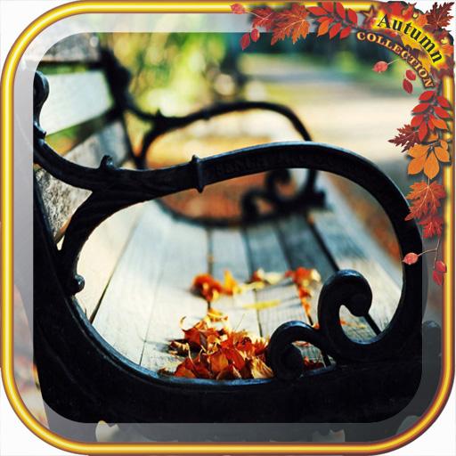 Dreamy Autumn wallpaper