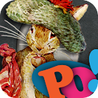 PopOut! The Tale of Benjamin Bunny: A Pop-up Story icon