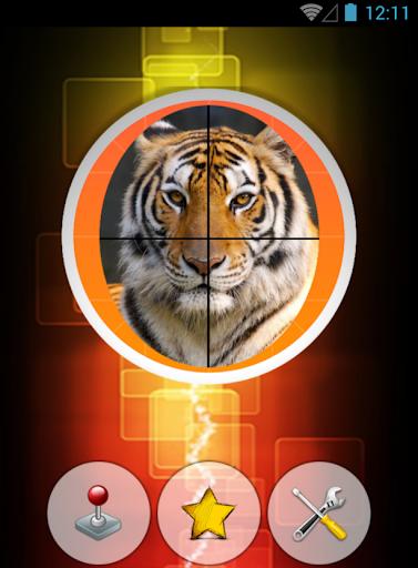 Tiger Slide Puzzle Game