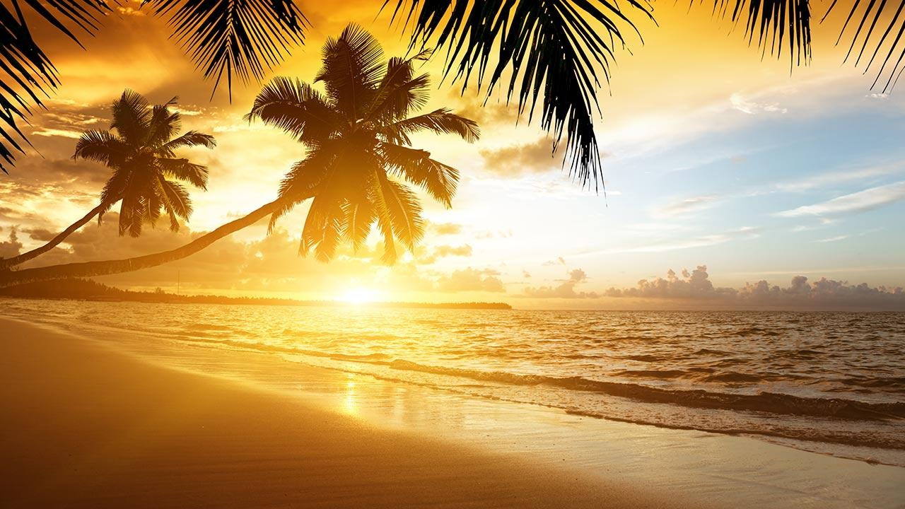 beach sunset live wallpaper - revenue & download estimates - google