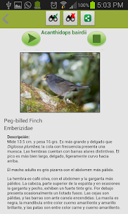 Aves de Costa Rica - screenshot thumbnail
