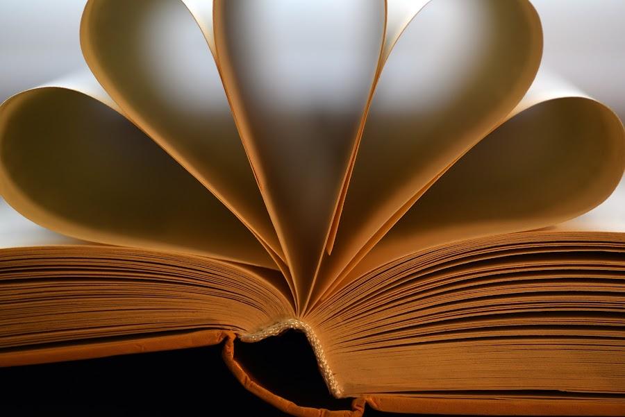 Book Flower by Marco Bertamé - Artistic Objects Still Life (  )