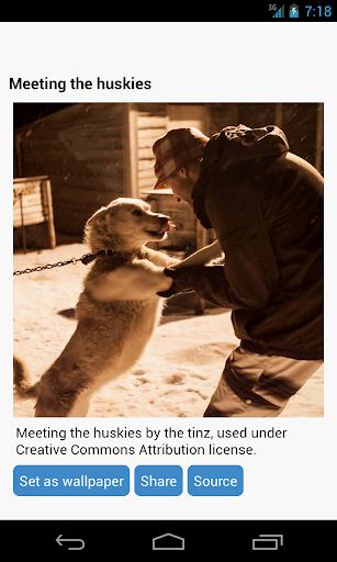 玩免費個人化APP 下載犬の壁紙 app不用錢 硬是要APP