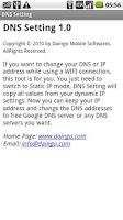 Screenshot of DNS Setting