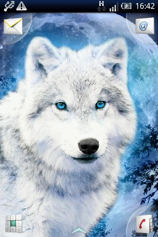 the wolf effect Welcome to beacon hills with werewolves, werewolf hunters, and much more, this seemingly normal town is filled with mystery and scandal as normal teenage drama.