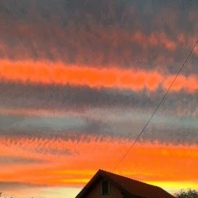 Rural Sunset in Orange Blue by Nat Bolfan-Stosic - Landscapes Sunsets & Sunrises ( orange, sky, blue, sunset, rural )