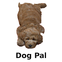 Dog Pal icon