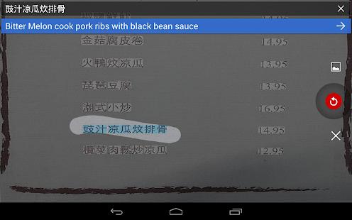 Google Translate Screenshot 28