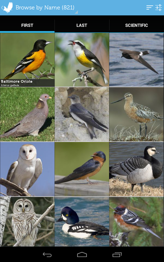 Audubon Birds Pro- screenshot