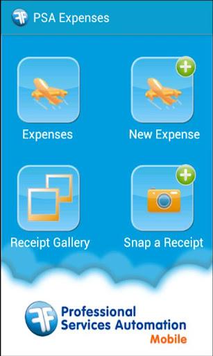 PSA Expenses Winter '13