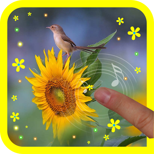 Sunflowers Gallery HD LWP LOGO-APP點子