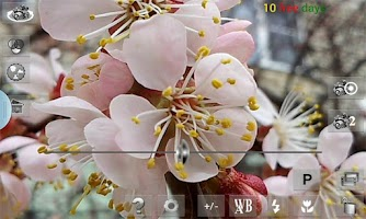 Screenshot of Your Camera