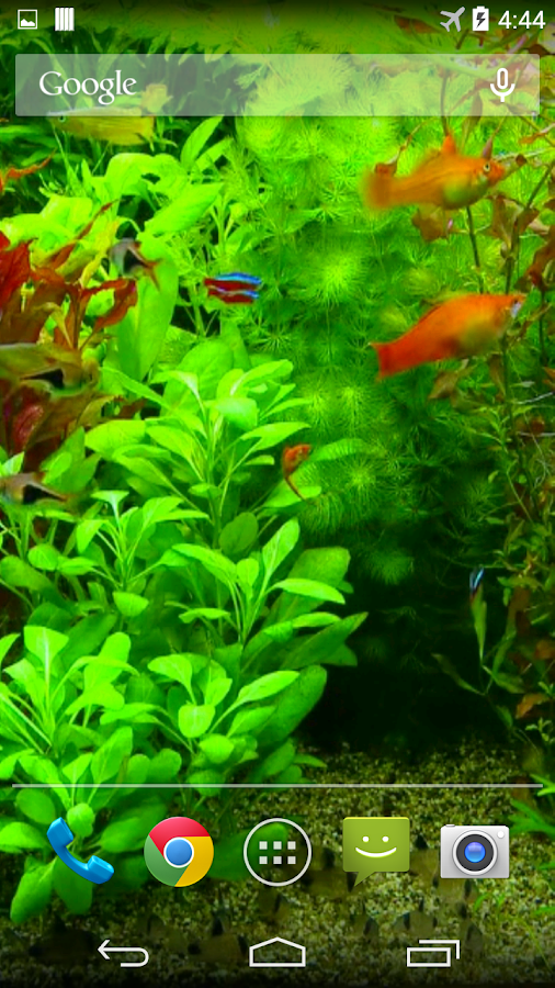 real aquarium 3d wallpaper android apps on google play. Black Bedroom Furniture Sets. Home Design Ideas