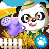 Dr. Panda's Veggie Garden
