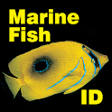Fish ID Maldives icon