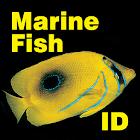 Fish ID Maldives icon