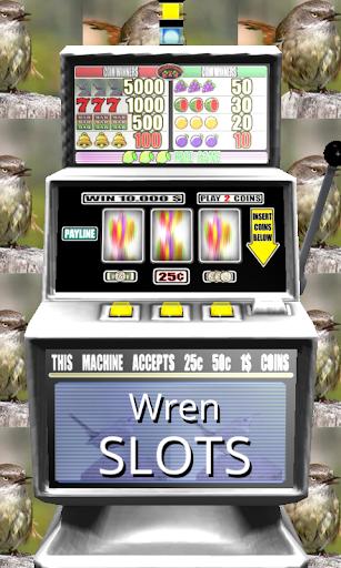 3D Wren Slots - Free