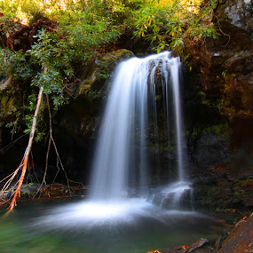Grotto Falls, Smoky Mountain by Mili Shrivastava - Landscapes Waterscapes ( grotto falls, nature, waterfall, smoky mountains )