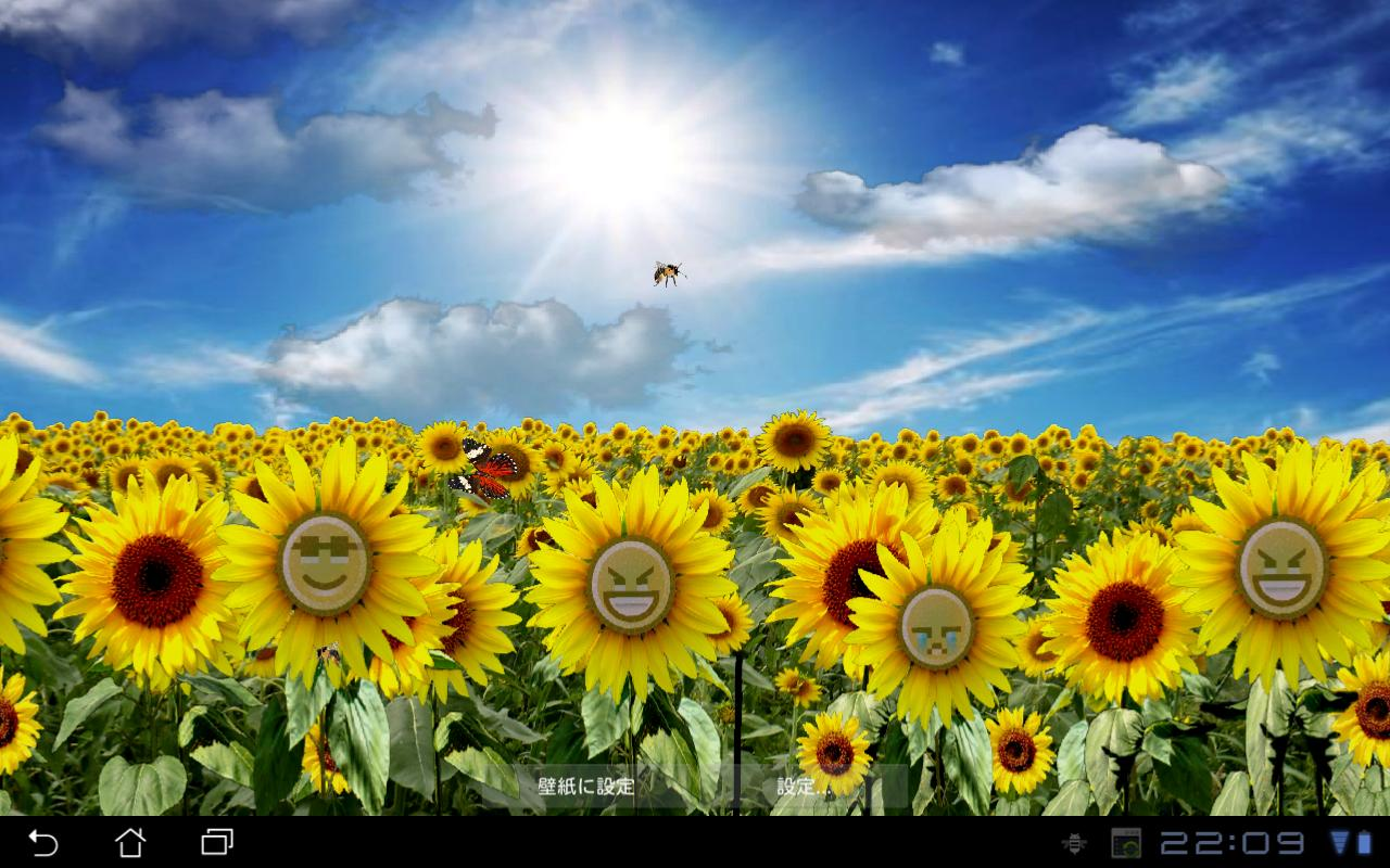 Sunflower LW Free + weather - screenshot