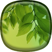 Leaf Live Wallpaper Galaxy S4