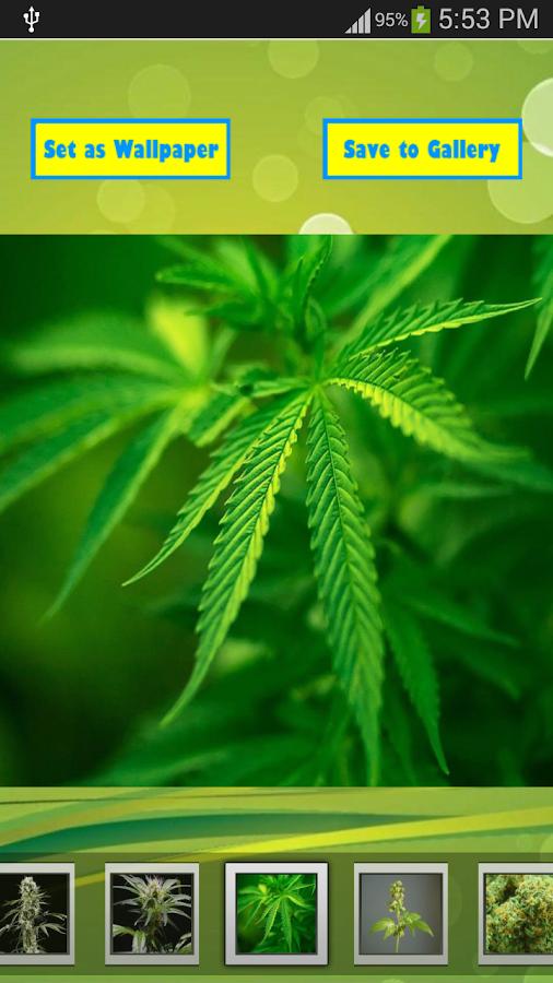 Best Weed Wallpapers - screenshot