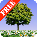 Summer Trees Free icon